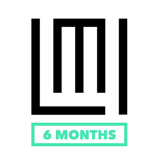 6 Months website subscription